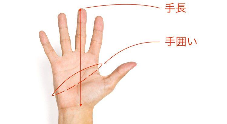 手袋の測り方
